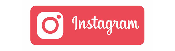Instagram button Website